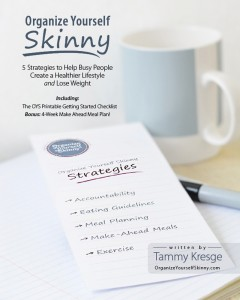 Organize Yourself Skinny 5 Strategies ebook