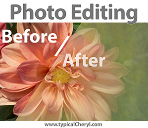 Photo Editing Painted Dahlia Before and After